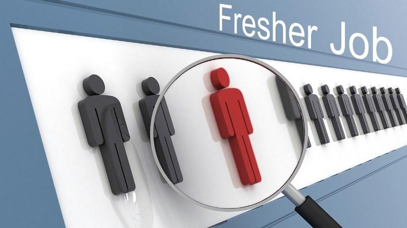 Tuyển dụng Lập trình viên Fresher