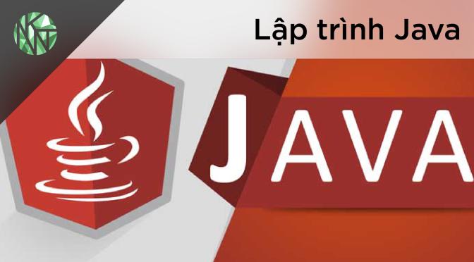EVIZI LLC TUYỂN Full-stack Java Developer