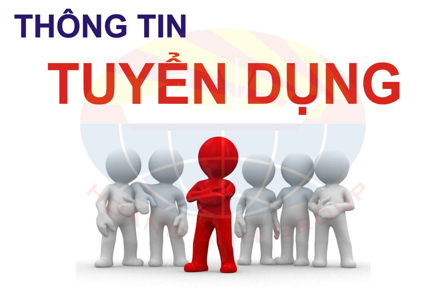 TUYỂN 30 FRESHER DEVELOPERS (JAVA,.NET...)